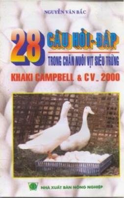 28 Câu Hỏi Đáp Trong Chăn Nuôi Vịt Siêu Trứng
