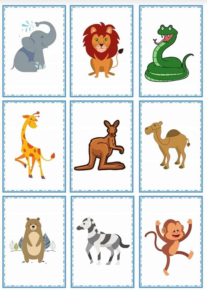 Animal Riddles ( Cut and Paste )