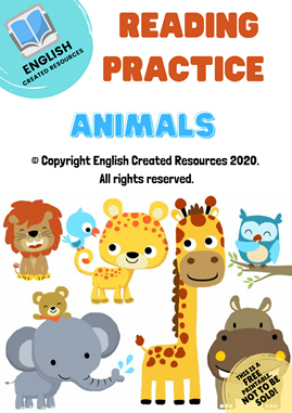 Reading Practice Worksheets