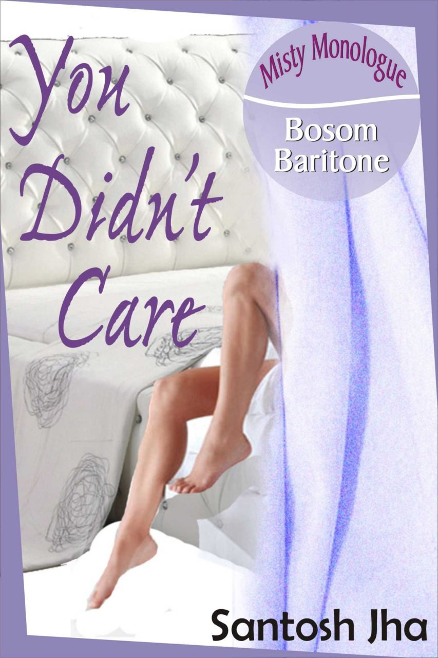 You Didn't Care by Santosh Jha